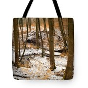 Trees In The Forest In Winter Brown And Orange Leaves Tote Bag
