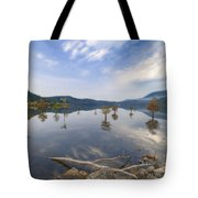 Trees In The Lake Tote Bag