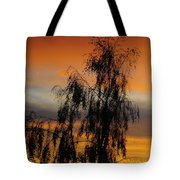 Trees In The Sunset Tote Bag