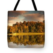 Trees Lining The Waters Edge Reflected Tote Bag