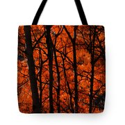 Trees Of Autumn Tote Bag