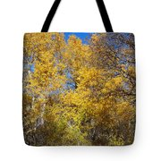 Trees Of Color Tote Bag