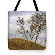 Trees Of The Beach Tote Bag