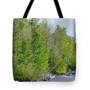Trees On A Lakeshore Tote Bag