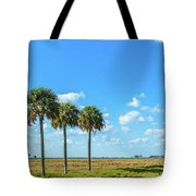 Trees On Landscape, Florida, Usa Tote Bag