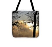 Trees On Misty Morning Tote Bag