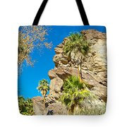 Trees On South Side Of Andreas Canyon In Indian Canyons-ca Tote Bag