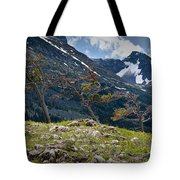 Trees On Top Of A Ridge At Glacier National Park Tote Bag