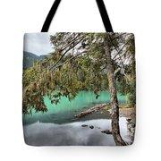 Trees Overhanging Cheakamus Lake Tote Bag