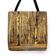 Trees Shadows Tote Bag