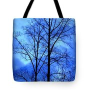 Trees So Tall In Winter Tote Bag