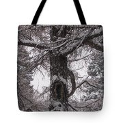 Trees Under Snow Tote Bag