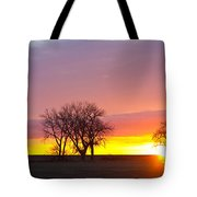 Trees Watching The Sunrise Panorama View Tote Bag