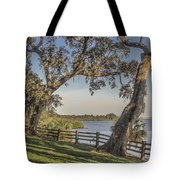 Trees With A View Tote Bag