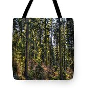 Trees With Moss In The Forest Tote Bag
