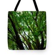 Treetops 2 Tote Bag