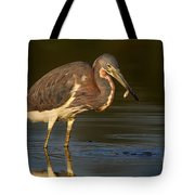 Tricolor Heron With Small Fish Tote Bag