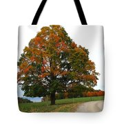 Tri-color Tree Tote Bag