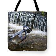 Tri-colored Heron No.2 Tote Bag