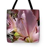Tri Pink Lily Tote Bag
