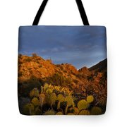 Trickle Of Light Tote Bag