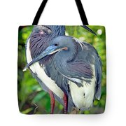Tricolor Heron Adults In Breeding Tote Bag