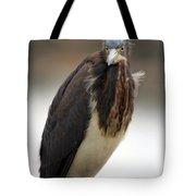 Tricolored Heron 2 Tote Bag