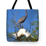 Tricolored Heron And Snowy Egret Tote Bag
