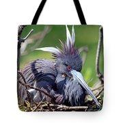 Tricolored Heron Female Incubating Eggs Tote Bag