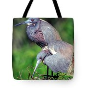 Tricolored Heron Male And Female At Nest Tote Bag