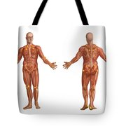 Trigger Points On The Human Body Tote Bag