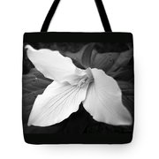 Trillium Flower In Black And White Tote Bag