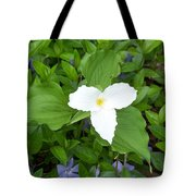 Trillium - White Beauty Tote Bag