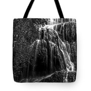 Trinity Waterfall In Monasterio De Piedra Park Bw Tote Bag
