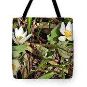 Trio Of Bloodroot Flowers Tote Bag