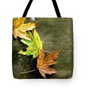 Trio Of Leaves Tote Bag