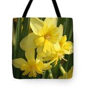 Tripartite Daffodil Tote Bag