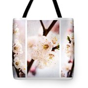 Triptych Light Of Spring 2 Tote Bag