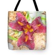 Tristar Iris Tote Bag