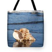 Triton Seashell Tote Bag