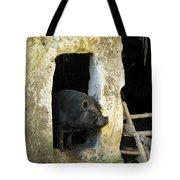 Troglodyte Pig Tote Bag