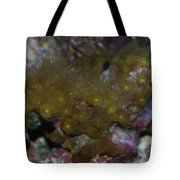 Tropica Fish Tote Bag