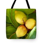 Tropical Almond Tote Bag