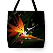 Tropical Bloom Tote Bag