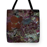 Tropical Coral Tote Bag