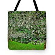 Tropical Entanglement Tote Bag