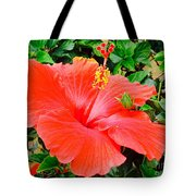 Tropical Explosion Tote Bag