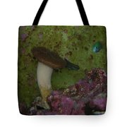 Tropical Fish And Coral Tote Bag