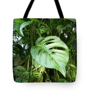 Tropical Green Foliage Tote Bag