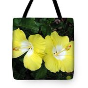 Tropical Hibiscus - Bonaire Wind 01 Tote Bag